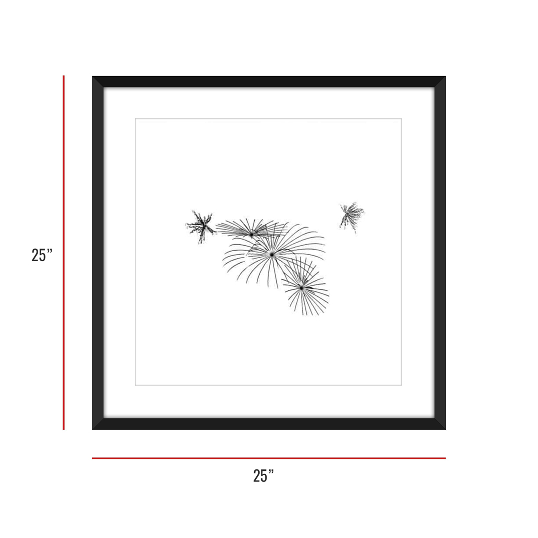 At Burst Point 007 Framed 25x25