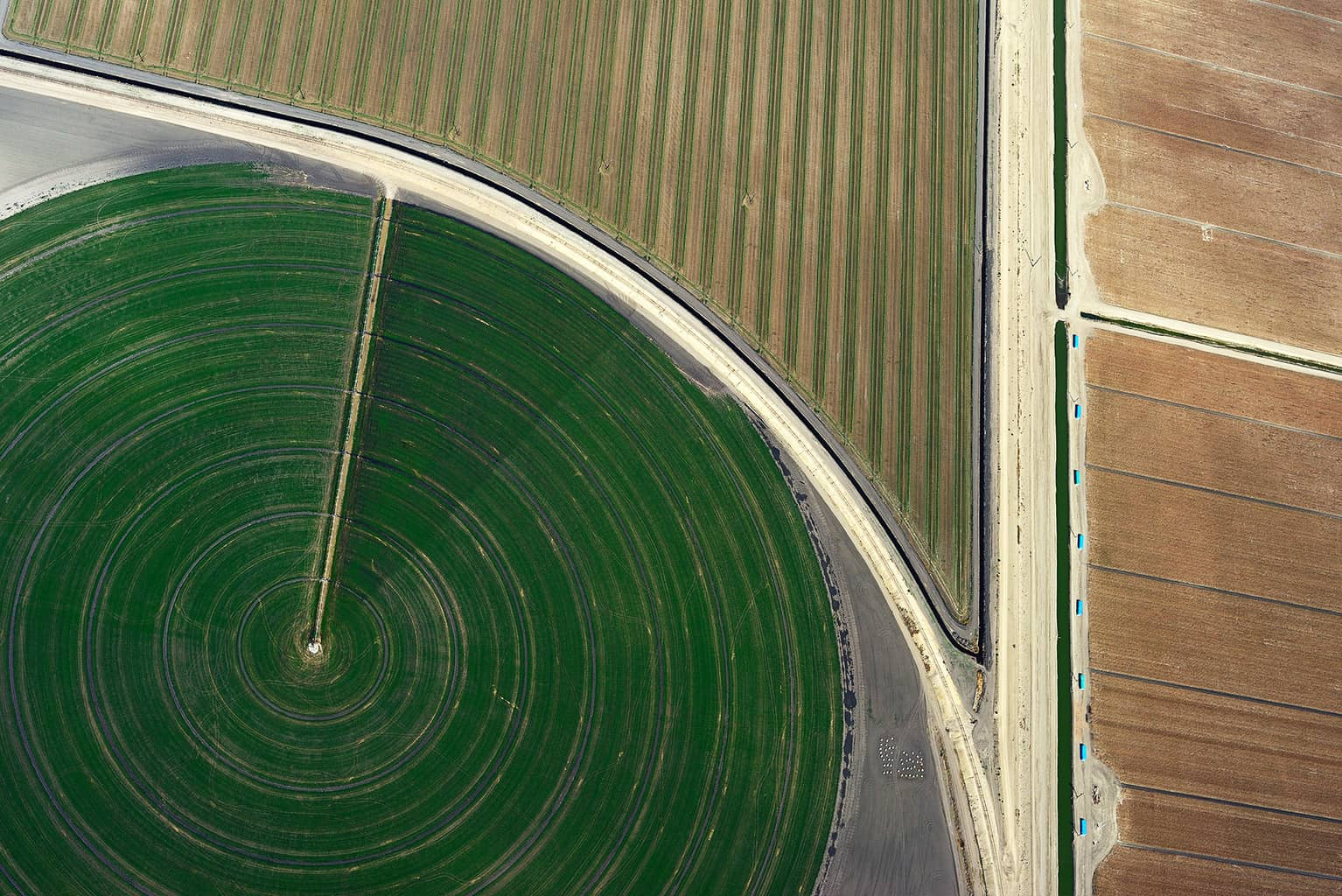 Agriculture #010, Mulholland's Gold, 2011-2014