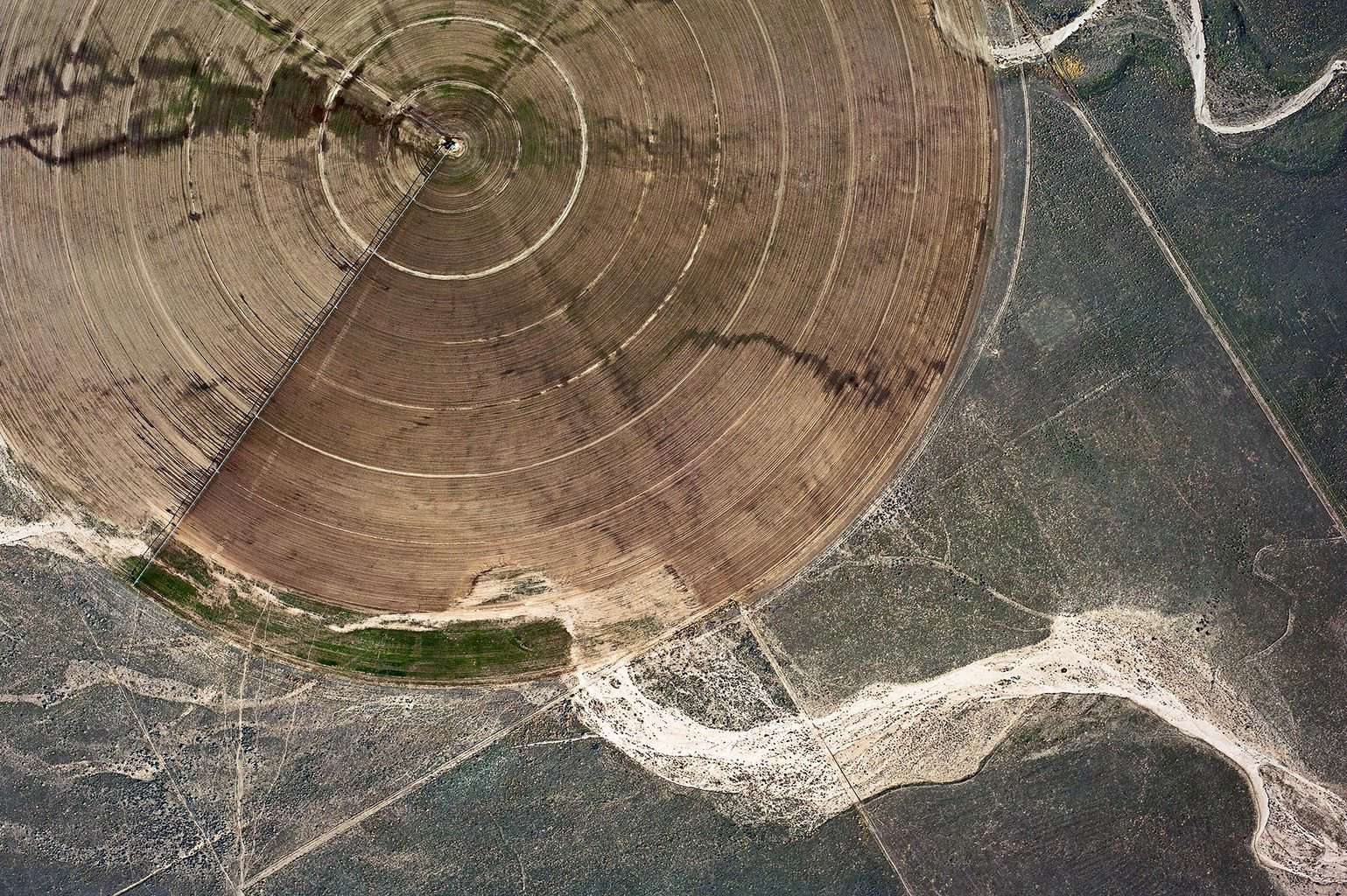 Agriculture #013, Mulholland's Gold, 2011-2014