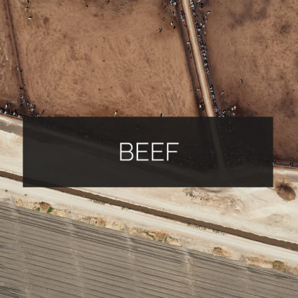 Beef Print Category